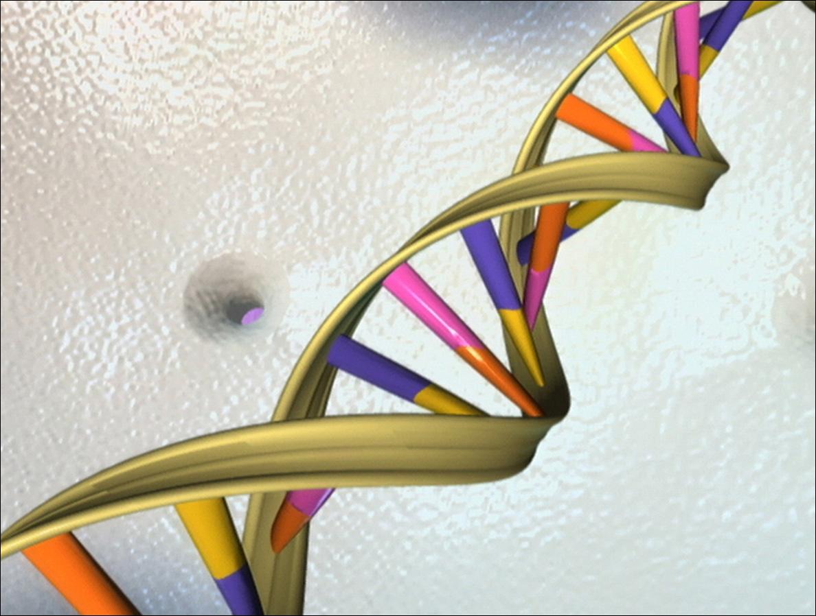 Tratamientos para el cáncer: Bloquear un gen podría detener el avance de la enfermedad