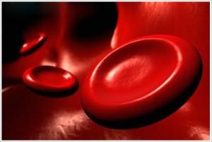 El tratamiento de la hemofilia: Nuevas perspectivas