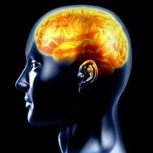 La crisis epiléptica: Los factores predisponentes