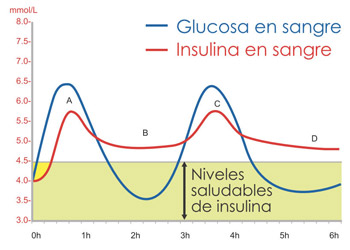Insulina y grasas