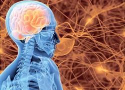 Medicina para la epilepsia: Los últimos estudios