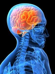 Beneficios de los ejercicios para el cerebro