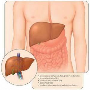 Nuevo tratamiento para la hepatitis C
