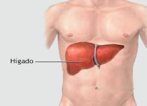 Combatir el hígado graso cambiando el estilo de vida