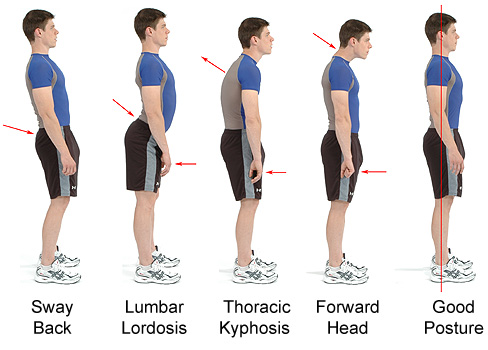 Prevenir la osteoporosis con una correcta postura corporal