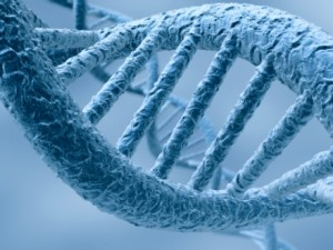 Desarrollo de cáncer: Identifican el material genético que promueve el crecimiento de tumores