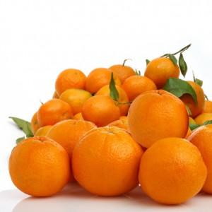 Prevenir la obesidad con las mandarinas