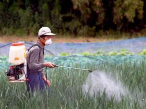 La exposición a pesticidas da lugar a bebés pequeños