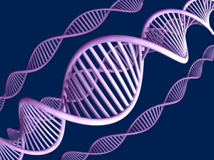 Los nuevos genes del lupus al descubierto