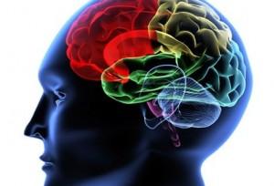 Una nueva técnica para tratar el derrame cerebral