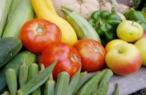 Los parásitos alimentarios
