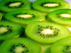 La dieta del kiwi bajo el microscopio