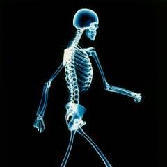 Prevención de la artritis: El cartílago da las primeras señas