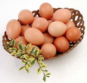 Los huevos en la dieta: ¿Cuántos y cómo?