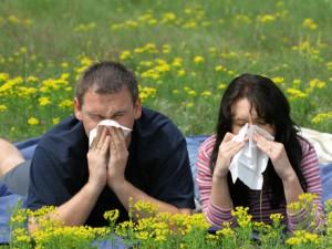 Remedios caseros para combatir la alergia primaveral