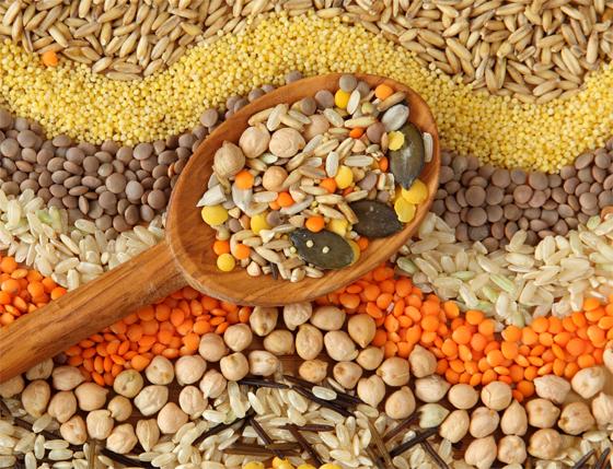 Las legumbres: ¿Son buenas o malas?