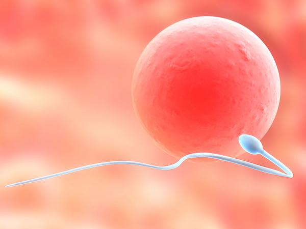 5 errores comunes que afectan la fertilidad