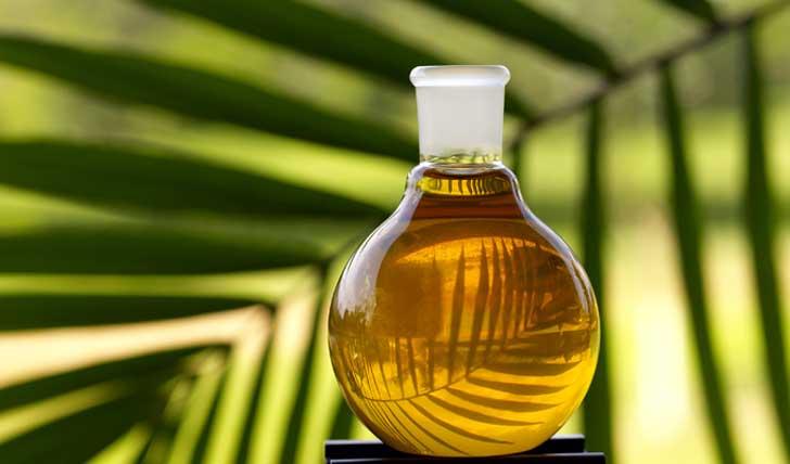 El aceite de palma: ¡Cuidado con su consumo!