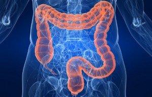 colon-irritable