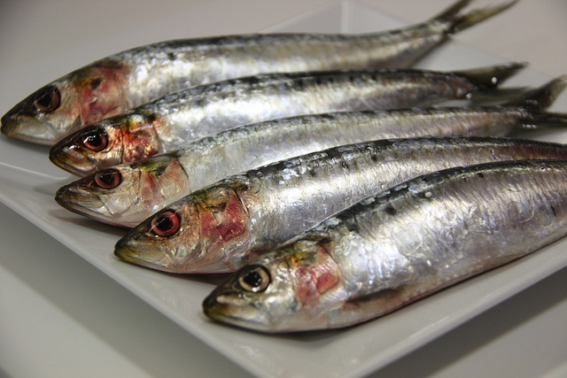 Los cinco pescados y mariscos con más ácidos grasos Omega-3