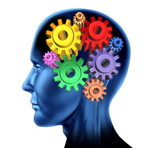 Cinco estrategias para estimular tu memoria