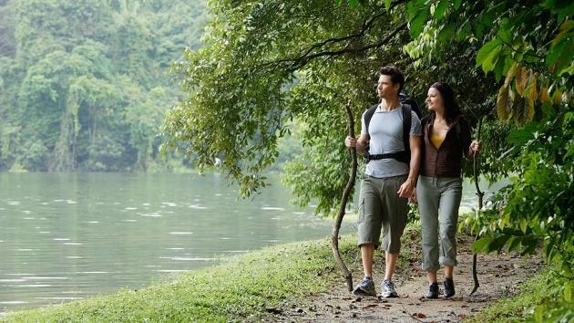 ¿Qué beneficios obtienes al disfrutar de la naturaleza?